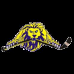 HBK Lion Svidník